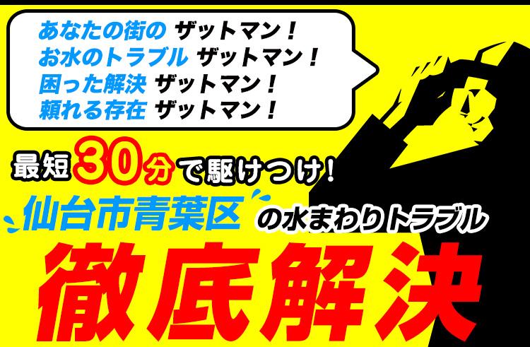 仙台市青葉区のトイレのつまり・水漏れ等、水まわりのトラブルの修理・解決ならザットマン