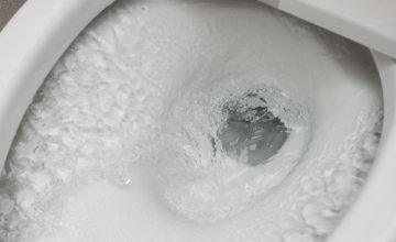 トイレのつまりの原因や対処法を知っておくべき!業者へ依頼する判断基準は?
