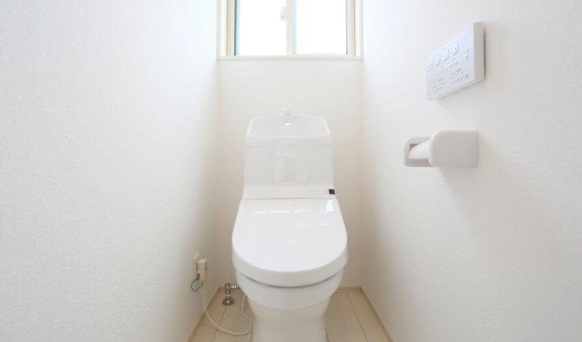 トイレのつまりは早めの対処が大切!業者選びのポイントとは?